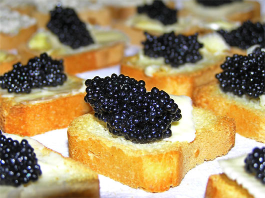 Dr caligari 39 s cabinet today is national caviar day for What fish does caviar come from